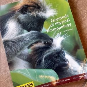 Essentials Of Physical Anthropology Textbook